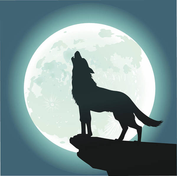 Lone Wolf Howling At The Moon Art Print