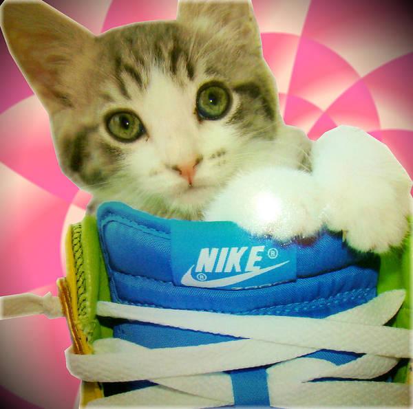 Digital Art Print featuring the digital art Nike Kitten by Alexandria Johnson