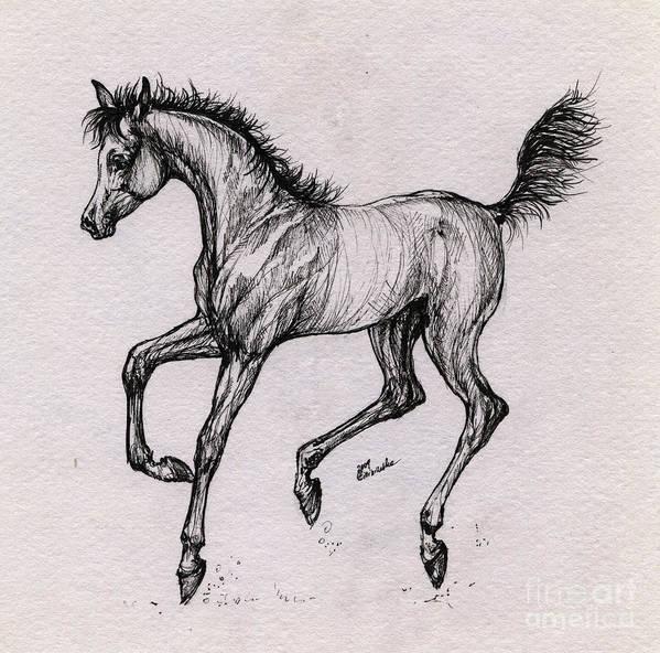 Foal Art Print featuring the drawing The Playful Foal by Angel Ciesniarska