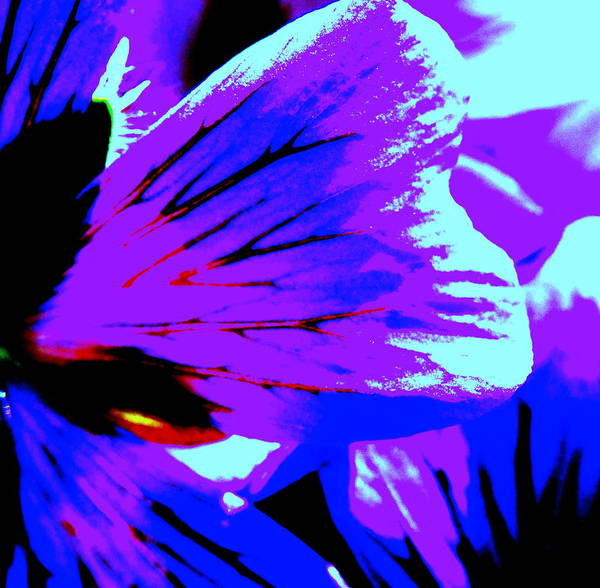 Flower Art Print featuring the photograph Butterfly by Konstantine Bak