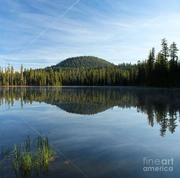 Summit Lake Art Print featuring the photograph Water Grass by Adam Jewell
