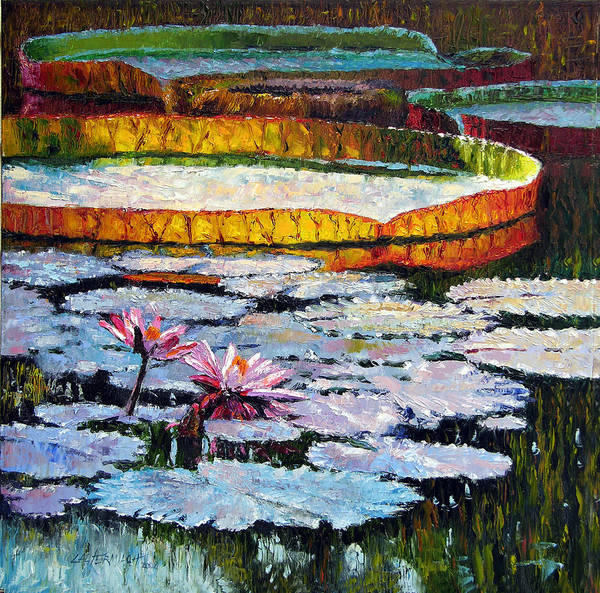 Water Lilies Art Print featuring the painting Afternoon Shadows by John Lautermilch