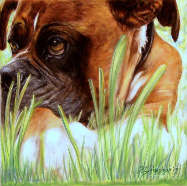 Boxer Art Print featuring the pastel Boxer by Patricia L Davidson