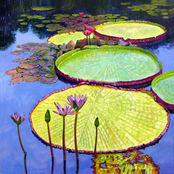 Garden Pond Art Print featuring the painting Floating Galaxies by John Lautermilch