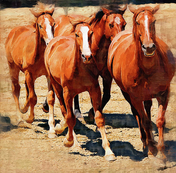 Horse Art Print featuring the painting Four Horses Running by Clarence Alford