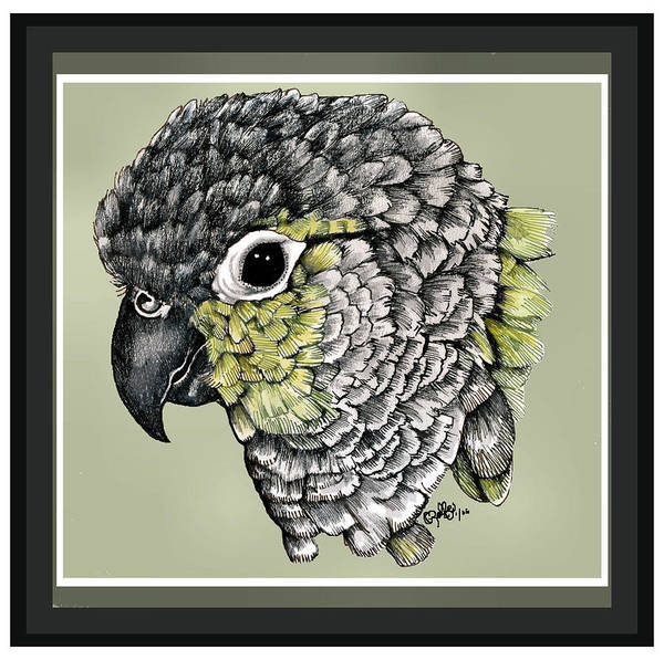 Art Print featuring the drawing Green Cheek by Crystal Rolfe