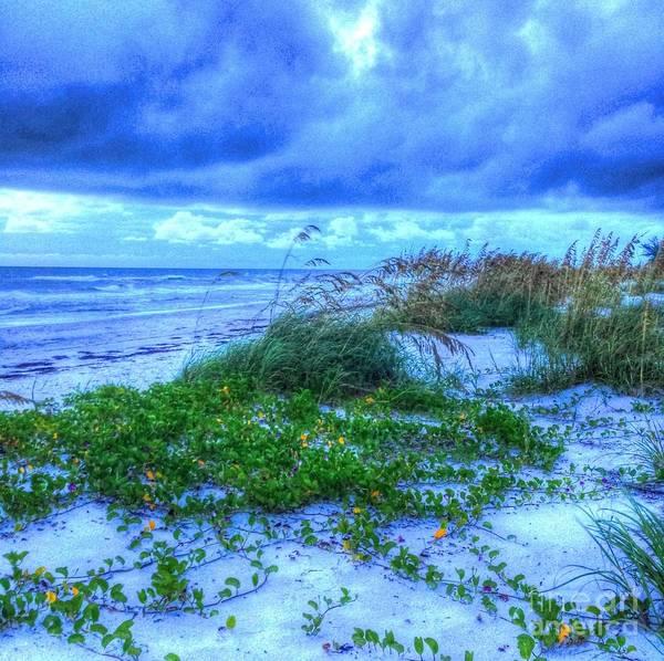 Beach Art Print featuring the photograph Just Beachy by Debbi Granruth