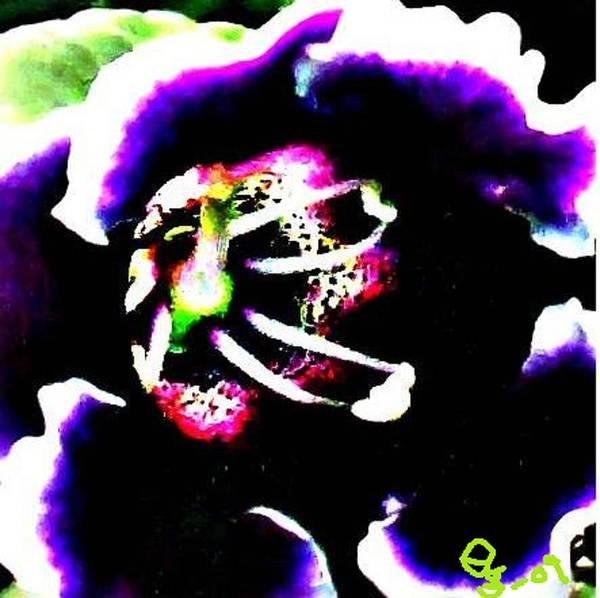Flowers Art Print featuring the digital art Kingwood Center 4 by Crystal Webb