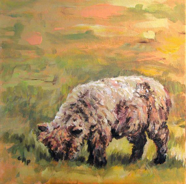 Lamb Art Print featuring the painting Lambkin by Cheryl Pass