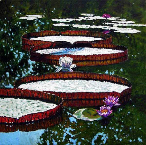 Garden Pond Art Print featuring the painting Lily Pad Highlights by John Lautermilch