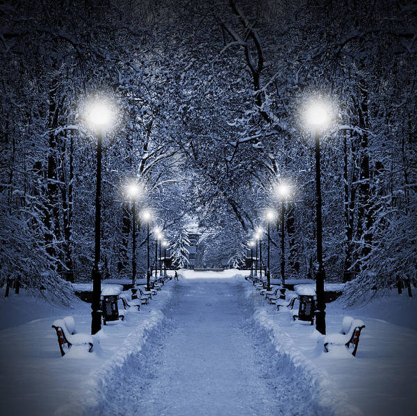 Beautiful Art Print featuring the photograph Park At Christmas by Jaroslaw Grudzinski