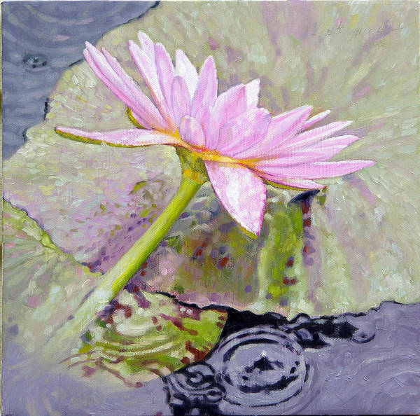 Water Lily Art Print featuring the painting Pastel Beauty by John Lautermilch