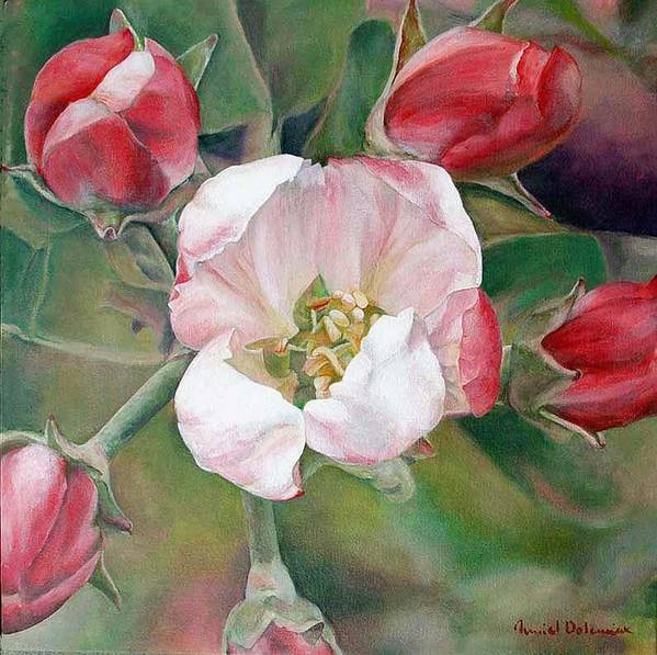 Floral Painting Art Print featuring the painting Pommier by Muriel Dolemieux
