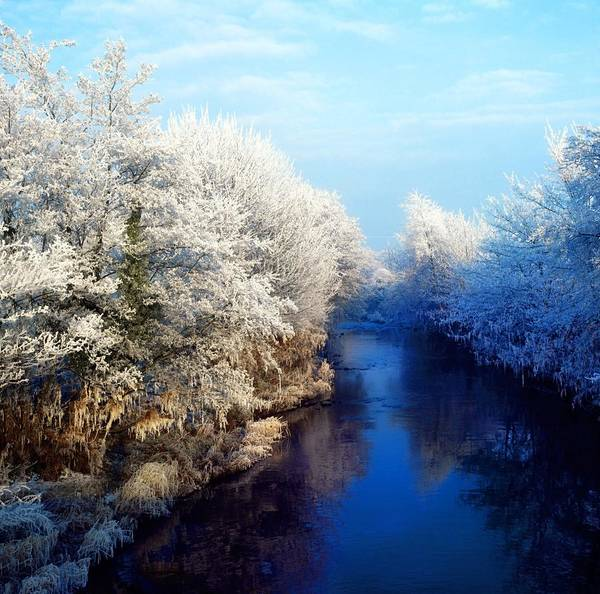 Beauty In Nature Art Print featuring the photograph River Bann, Co Armagh, Ireland by The Irish Image Collection