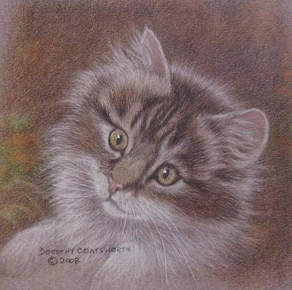 Art Print featuring the painting Tabby Kitten by Dorothy Coatsworth