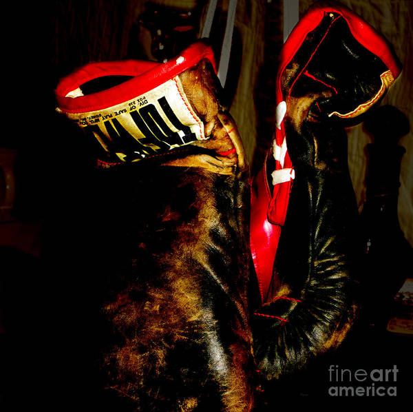 Boxing Print featuring the photograph The Gloves by Steven Digman