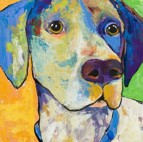 German Shorthair Animalsdog Blue Yellow Acrylic Canvas Art Print featuring the painting Yancy by Pat Saunders-White