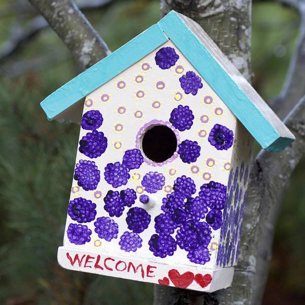 Birdhouse Art Print featuring the photograph Cute Little Birdhouse by Carol Leigh