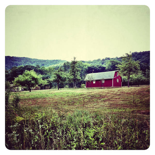 Barn Art Print featuring the photograph Red Barn by Natasha Marco