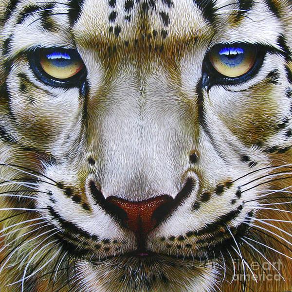 Snow Leopard Art Print featuring the painting Snow Leopard by Jurek Zamoyski