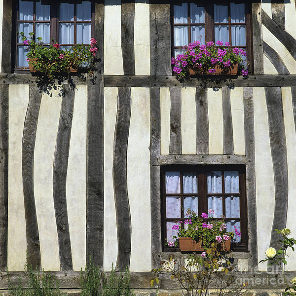 Architecture Building Buildings Day Daylight Daytime During Europe European Exterior Exteriors Facade Facades Fachwerk Fachwerk Frame Framed Framework France French Front Fronts Half Half-timbered House Houses In Mock Nobody Normandy Outdoor Photo Photos Shot Shots The Timber Timber-frame Timber-framed Timbered Tudor Tudorbethan Typical Art Print featuring the photograph Typical House Half-timbered In Normandy. France. Europe by Bernard Jaubert