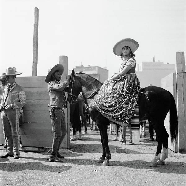 Photography Art Print featuring the photograph 1930s Woman Sitting On Horse Wearing by Vintage Images