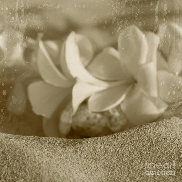 Aloha Art Print featuring the photograph Aloha'lani Pua Melia Lei Manakai by Sharon Mau