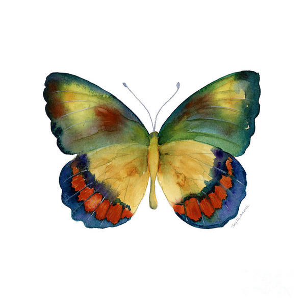 Bagoe Butterfly Print featuring the painting 67 Bagoe Butterfly by Amy Kirkpatrick
