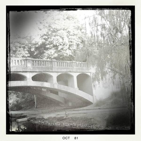 Arboretum Art Print featuring the photograph Arboretum Bridge by Justine Connolly