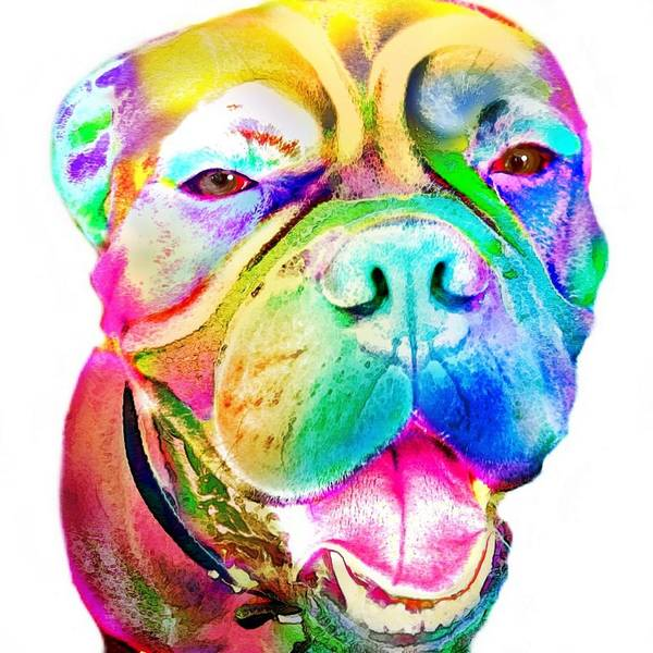Mastiff Art Print featuring the digital art Big Dog by Cindy Edwards