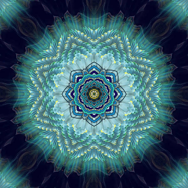Abstract Art Print featuring the digital art Bird Tail Lotus Mandala by Deborah Smith