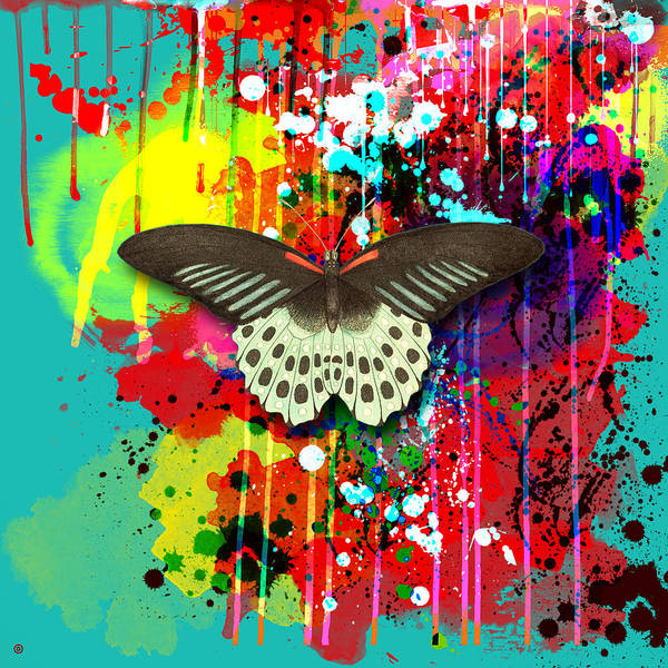 Gary Grayson Art Print featuring the painting Butterfly Montage by Gary Grayson
