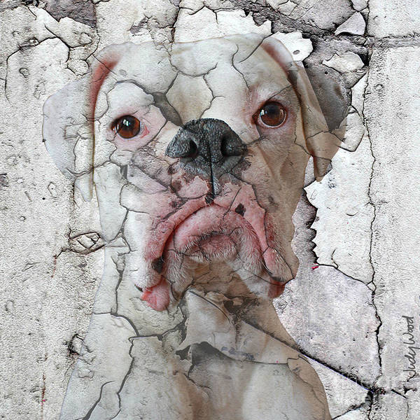 Dog Art Print featuring the digital art Cracking Up by Judy Wood