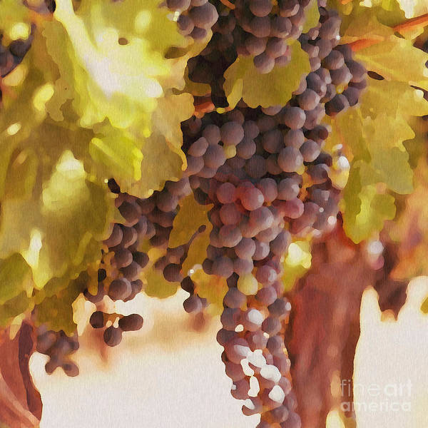 Grapes Art Print featuring the drawing Crush Time by Artist and Photographer Laura Wrede
