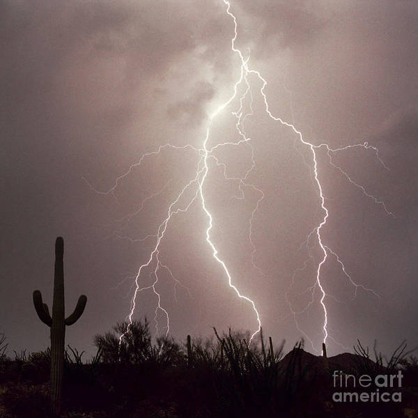Lightning Art Print featuring the photograph Electric Desert Ll by Douglas Taylor