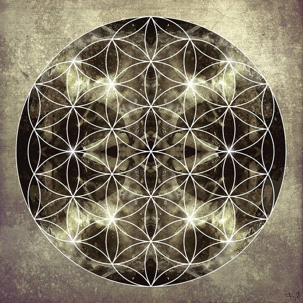 Mandala Print featuring the digital art Flower Of Life Silver by Filippo B