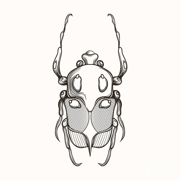Shield Art Print featuring the digital art Hand Drawn Engraving Sketch Scarab by Panki