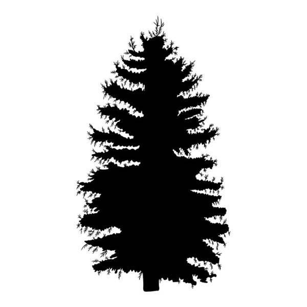 Hand Drawn Fir Tree Vector Illustration Silhouette Of Black Pine Tree Art Print