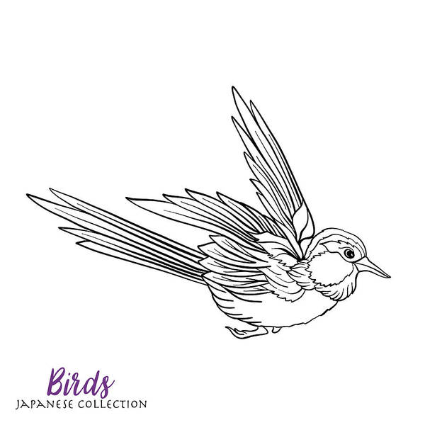 Japanese Birds. Stock Line Vector Illustration. Coloring Book For Adult.  Outline Drawing Coloring Page. Art Print