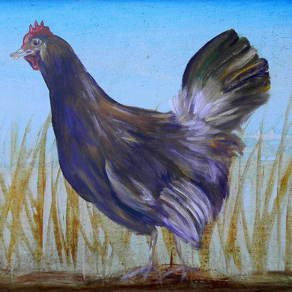 Chicken Art Print featuring the painting Legbar Chicken by Judy Bruning