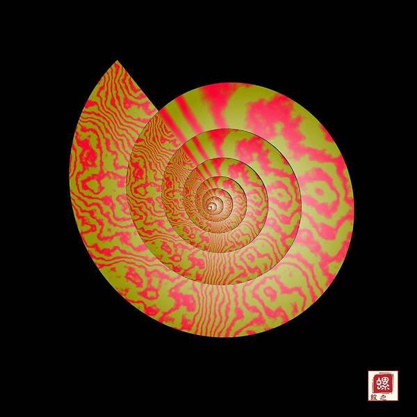 Conch Art Print featuring the photograph Math Conch by GuoJun Pan