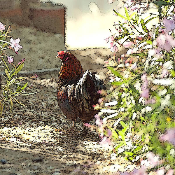 Rooster Art Art Print featuring the painting Mr. Rooster Takes A Stroll by Artist and Photographer Laura Wrede