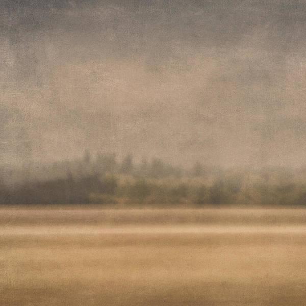 Oregon Art Print featuring the photograph Oregon Rain by Carol Leigh