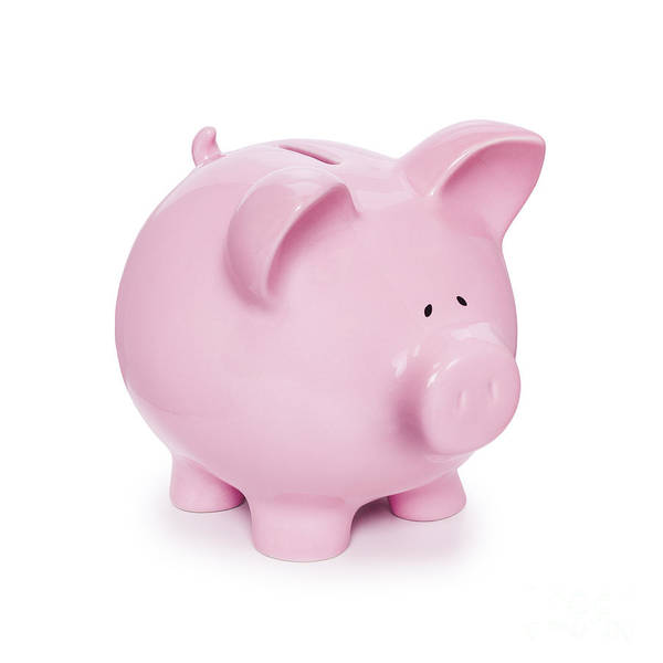 Piggy Bank Art Print featuring the photograph Piggy Bank by Colin and Linda McKie