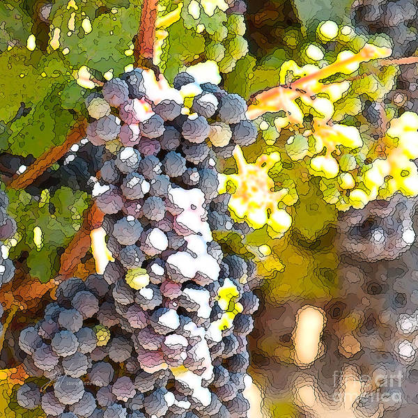 Grapes Print featuring the painting Ripe Grapes by Artist and Photographer Laura Wrede