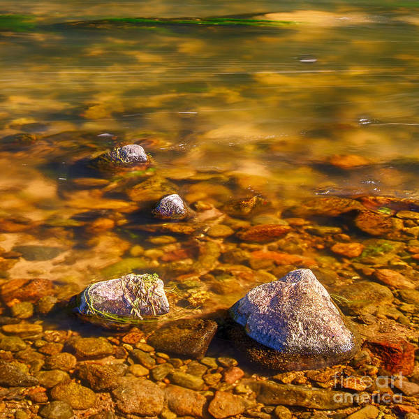 Scottish River Canvas Art Print featuring the photograph River Rocks by Mike Stephen