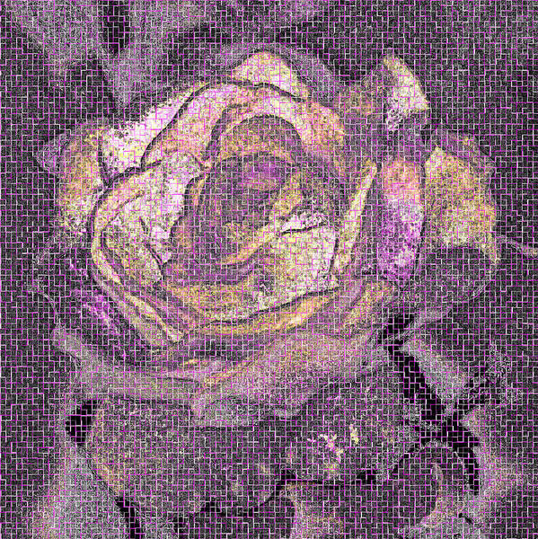 Rose Art Print featuring the photograph Rose Art # 1 by Selicia Russo