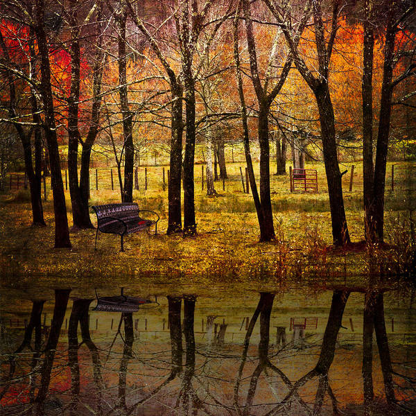 Appalachia Art Print featuring the photograph Seeing You Again by Debra and Dave Vanderlaan