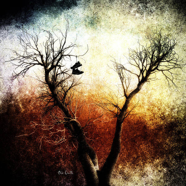 Tree Art Print featuring the photograph Sneakers In The Tree by Bob Orsillo