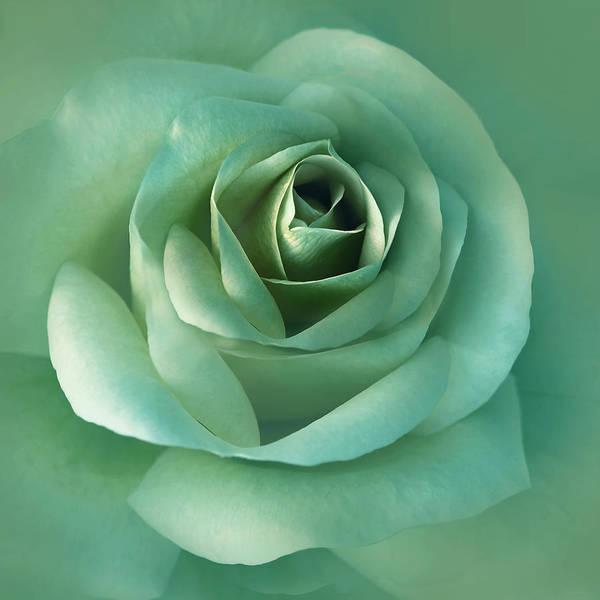 Rose Art Print featuring the photograph Soft Emerald Green Rose Flower by Jennie Marie Schell
